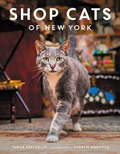 Shop Cats of New York